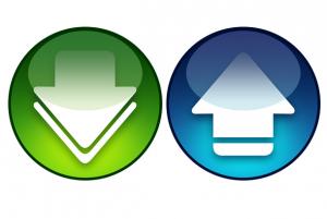Download Manager logo