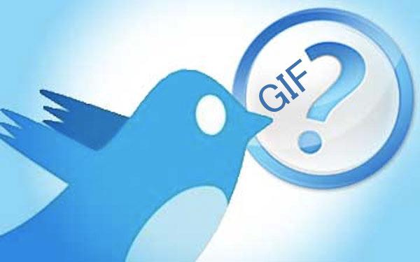 Twitter-GIF-JPEG-question