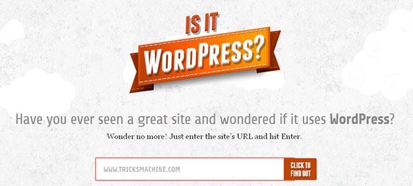 Is it WordPress