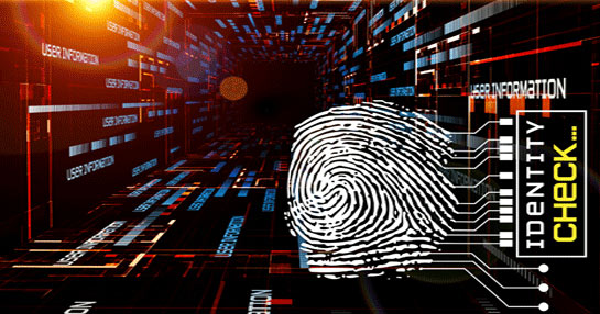 Identity Verification Service