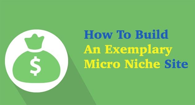 Build-Micro-Niche-Site